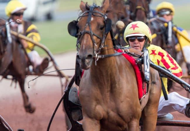 Cheval et jockey pendant une course hippique dans le Calvados