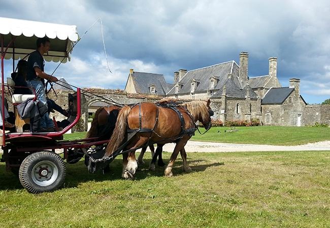Attelage dans le Calvados