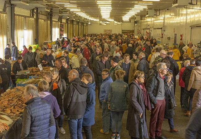 Fête de la coquille saint jacques dans le Calvados en Normandie