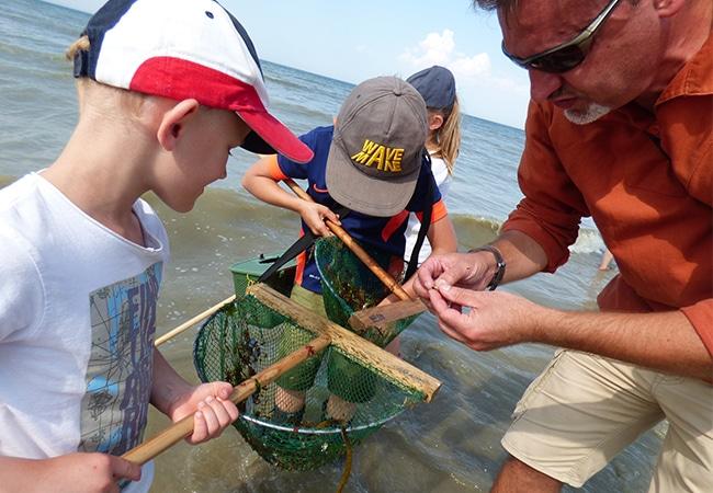 Enfants dans le Calvados faisant de la pêche à pied avec des épuisettes