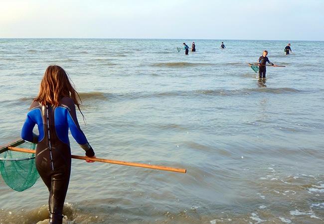 Enfants en plein pêche à pieds dans le Calvados en Normandie