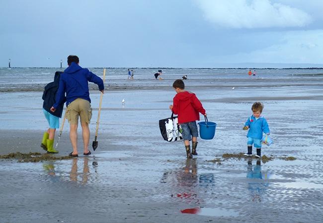 Famille dans le Calvados en Normandie en pleine pêche à pied