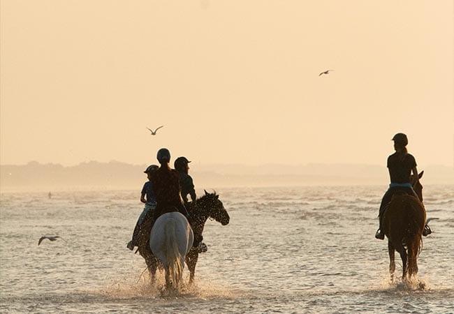 Cavaliers en balade à cheval sur la plage de Cabourg