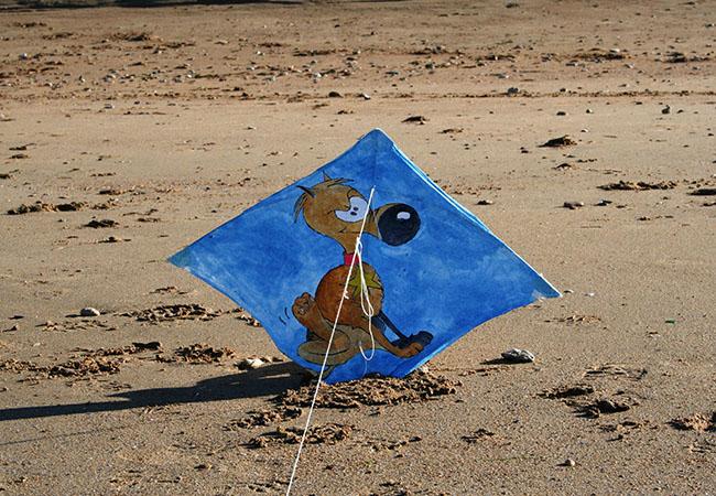 Découverte du cerf-volant sur la plage d'Hermanville sur Mer dans le Calvados
