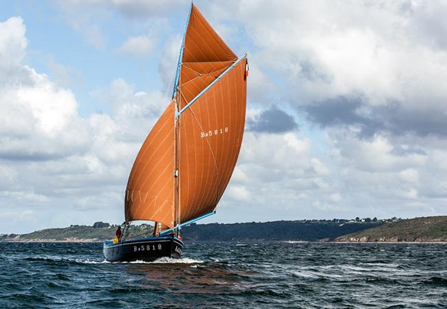 Voilier traditionnel Petit Foc en mer au large de Trouville sur Mer