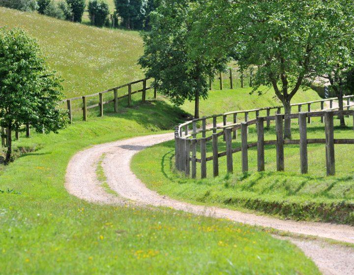 Chemin qui serpente dans le Pays d'Auge
