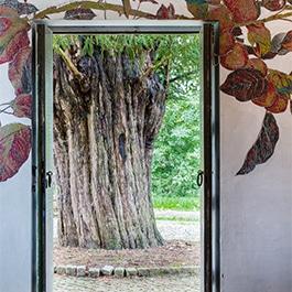 Chapelle insolite avec vue sur arbre