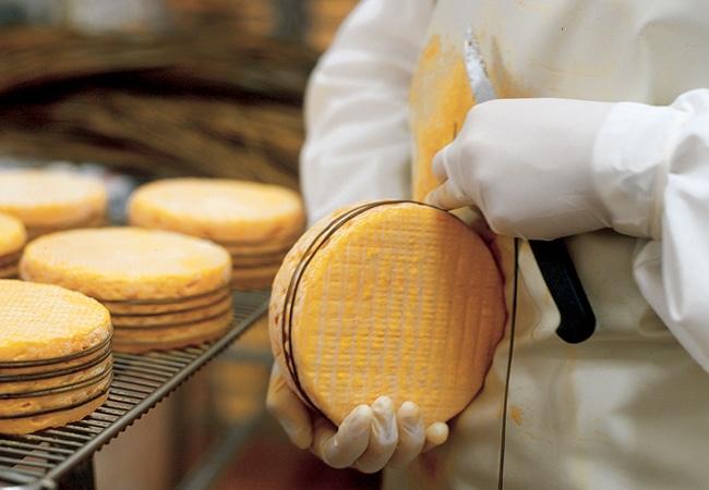 Livarot préparé en fromagerie