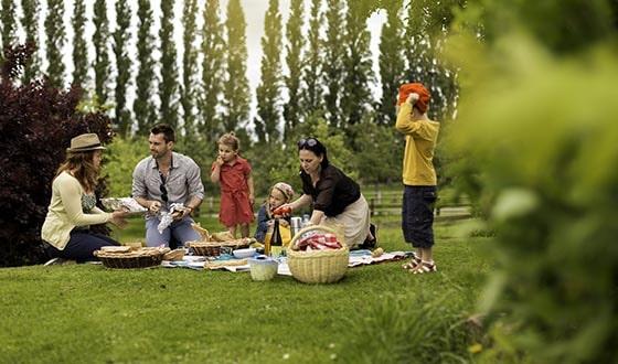 Pique-nique avec les enfants dans l'herbe