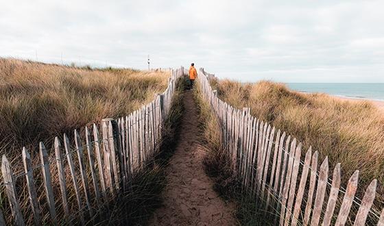 Balade dans des sentiers sur la dune à la plage