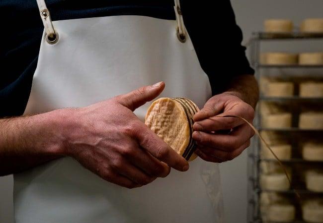 producteur de fromage mettant les lèches ou lanières entourant les Livarot OGP de Normandie
