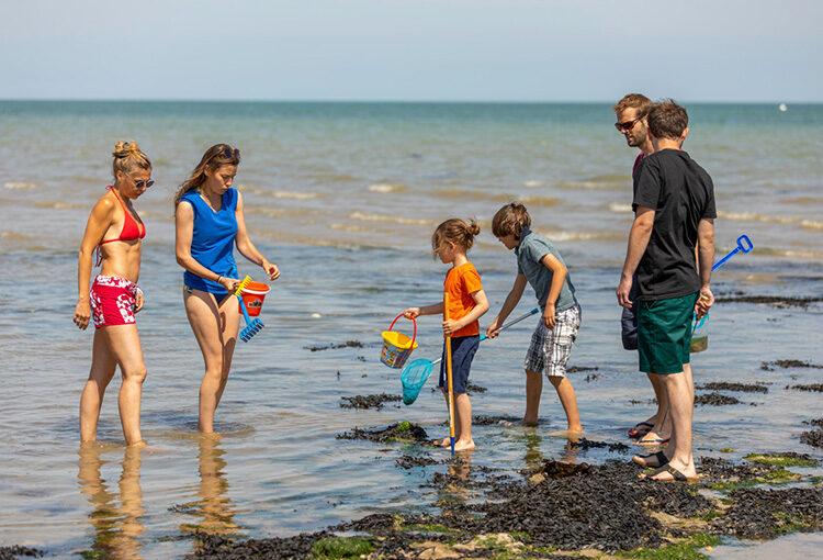 Des couples et leurs enfants en faisant de la pêche à marée basse