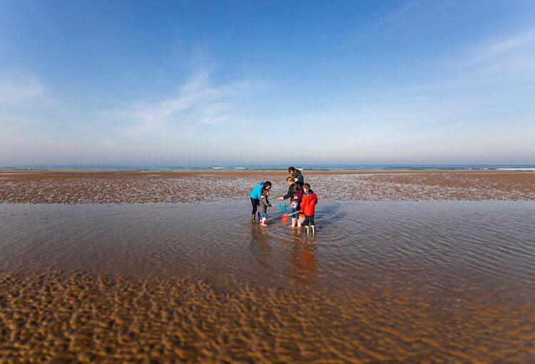 Un couple et ses enfants à la pêche à marée basse