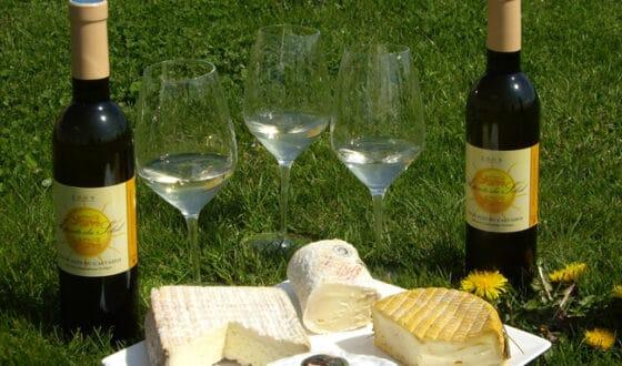 Bouteilles de vin pour un pique-nique